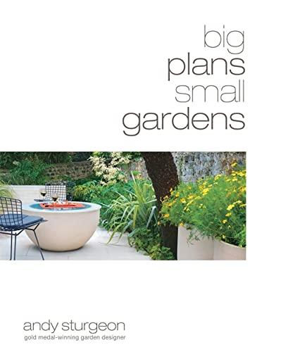 9781845333720: Big Plans, Small Gardens