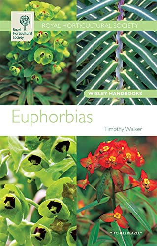 9781845333768: Euphorbias (Wisley Handbooks)