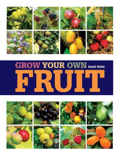 9781845336004: Grow Your Own Fruit (Royal Horticultural Society Grow Your Own)