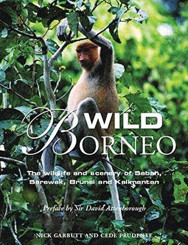 9781845373788: Wild Borneo: The Wildlife and Scenery of Sabah, Sarawak, Brunei and Kalimantan
