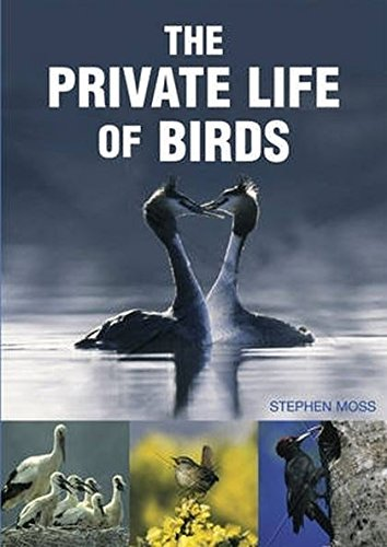 9781845374228: The Private Life of Birds
