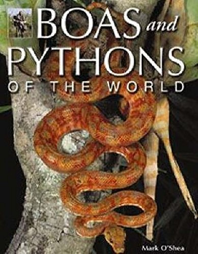 9781845375447: Boas and Pythons of the World