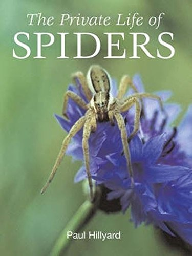 9781845376901: Private Life of Spiders