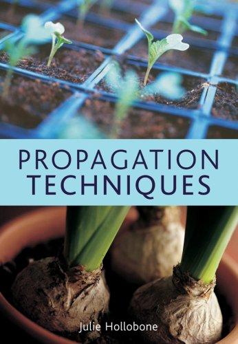 9781845379902: Propagation Techniques