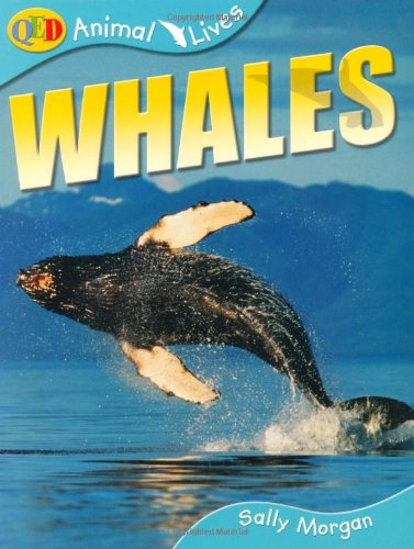 9781845382025: Whales
