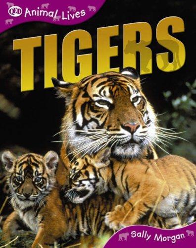 9781845382995: Tigers
