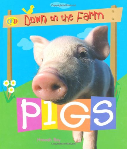 9781845383565: Pigs (QED Down on the Farm)