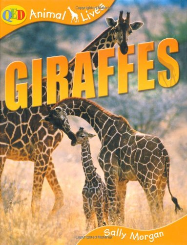 9781845383763: Giraffes (QED Animal Lives)