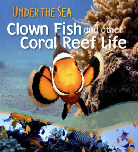 Clown Fish and Other Coral Reef Life (Under the Sea): Sally Morgan