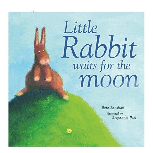 9781845395414: Little Rabbit Couldn't Sleep (Mini Board Books)