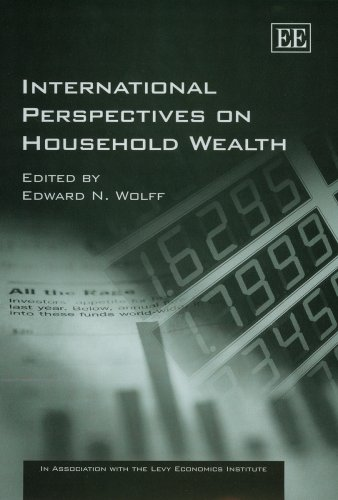 9781845421168: International Perspectives on Household Wealth