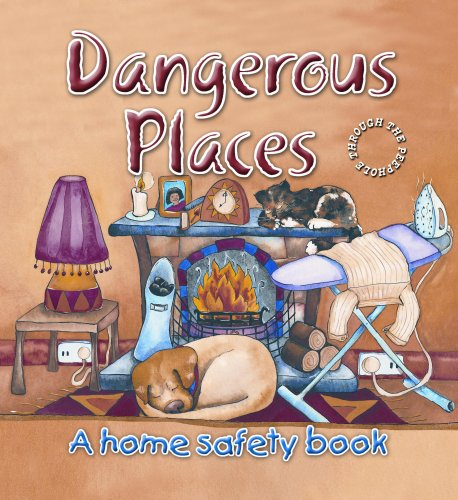 Dangerous Places: A Home Safety Book (Through the Peephole) (Through the Peephole): Daykin, Louise,...