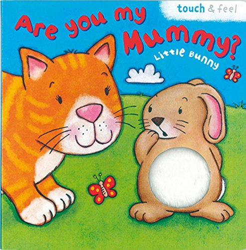 9781845616779: Little Bunny: Are You My Mummy? (Board Book 200)