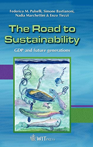 9781845641405: The Road to Sustainability: GDP and future generations (The Sustainable World)