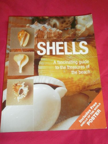 9781845732615: Shells: A Fascinating Guide to the Treasures of the Beach