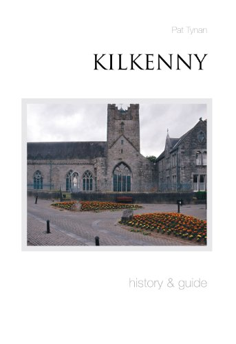 Kilkenny: Pat Tynan