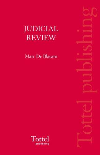 9781845924003: Judicial Review