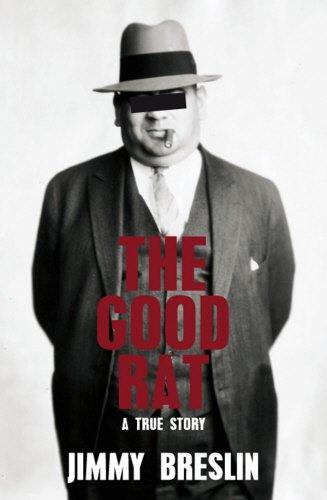 9781845963668: Good Rat