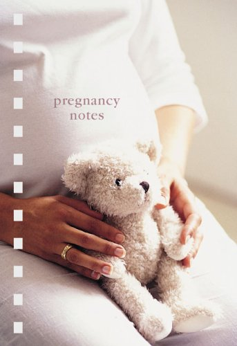 Pregnancy Notes (Paperstyle Themed Mini Notebooks): Ryland Peters & Small