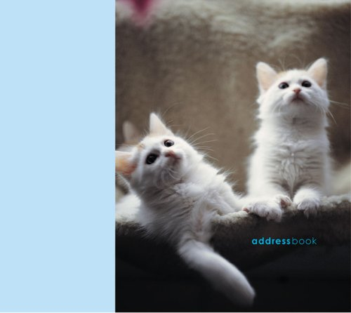 9781845970239 cats kittens paperstyle address books abebooks