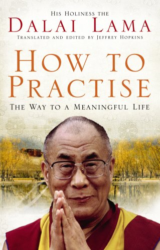 9781846041082: How To Practise: The Way to a Meaningful Life