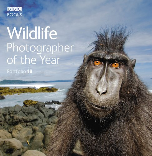 9781846075810: Wildlife Photographer of the Year Portfolio 18