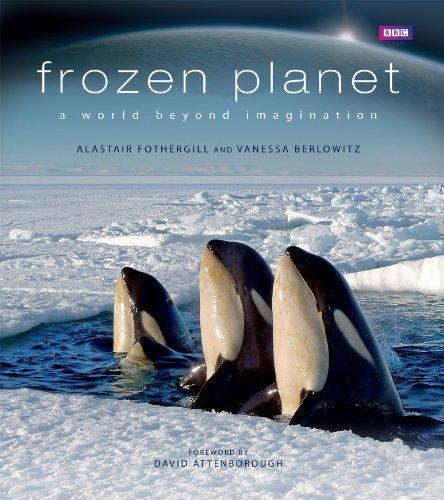 9781846079627: Frozen Planet