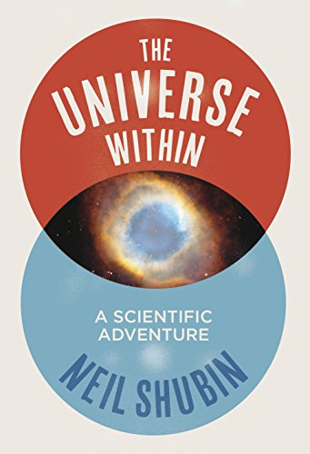 9781846142208: The Universe Within: A Scientific Adventure