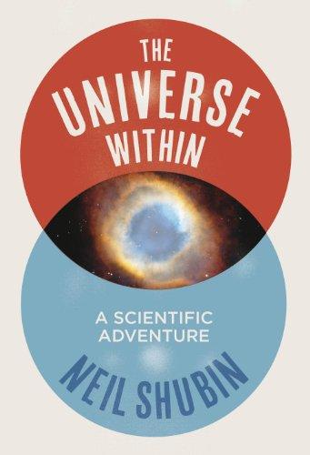 9781846142208: The Universe Within: A Scientific Adventure