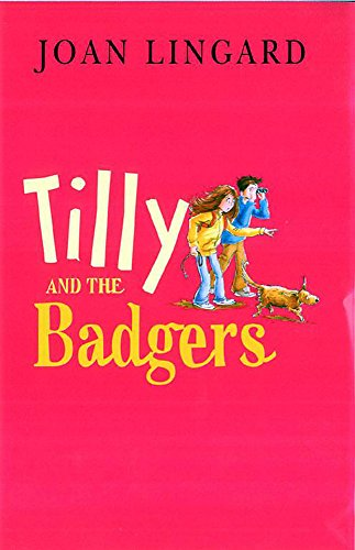 9781846162879: Tilly And The Badgers