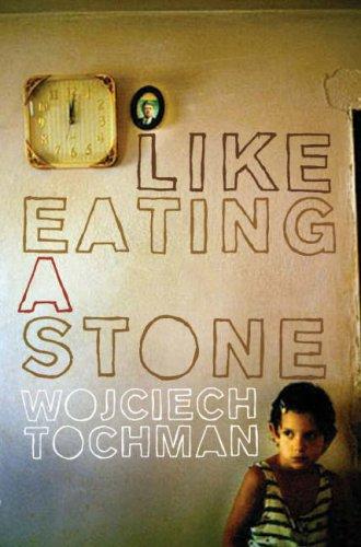 9781846270871: Like Eating a Stone