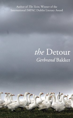 9781846555442: The Detour