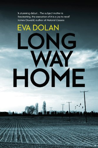 9781846557798: Long Way Home (Zigic & Ferreira 1)