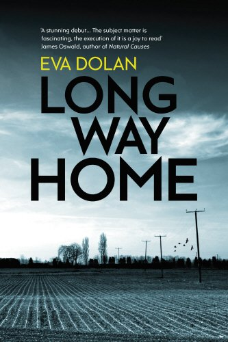 9781846557798: Long Way Home (Zigic & Ferreira 1)