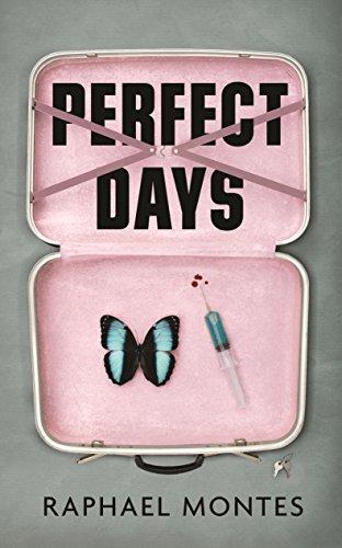9781846559525: Perfect Days