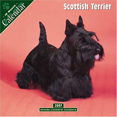 9781846620881: Scottish Terrier 2007 Wall Calendar