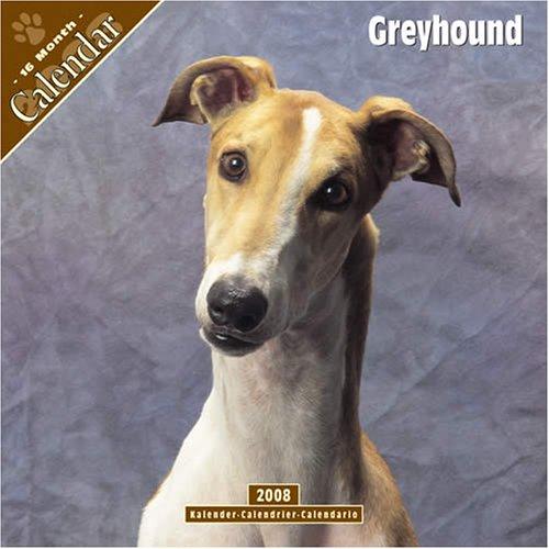 9781846622915: Greyhound 2008 Wall Calendar