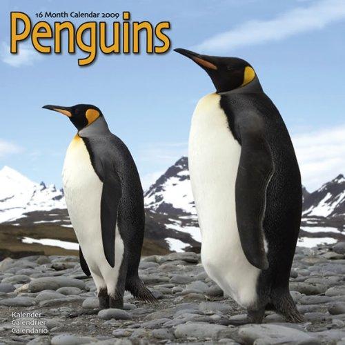 9781846625756: 2009 Penguins Wall Calendar