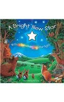 9781846661617: A Bright New Star (Story Book)