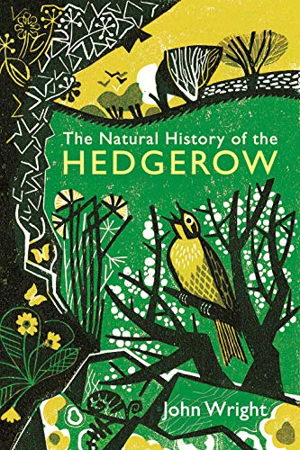 9781846685521: A Natural History of the Hedgerow