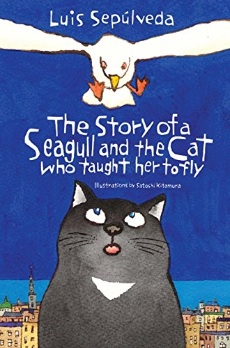 9781846884009: The Story of a Seagull and the Cat Who Taught Her to Fly