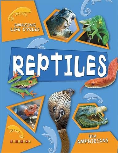 9781846960710: Amazing Life Cycles: Reptiles and Amphibians