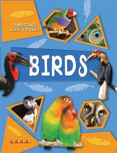 9781846960727: Amazing Life Cycles: Birds