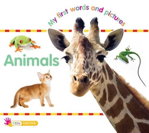 9781846968884: Animals: Little Ticktock (My First Words and Pictures)