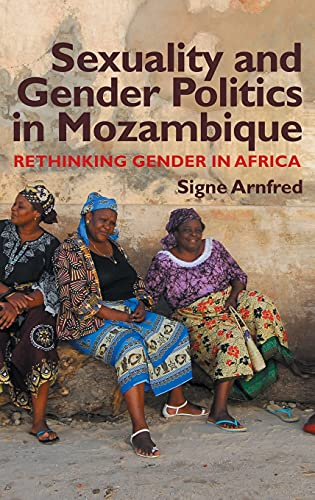 9781847010353: Sexuality and Gender Politics in Mozambique: Rethinking Gender in Africa