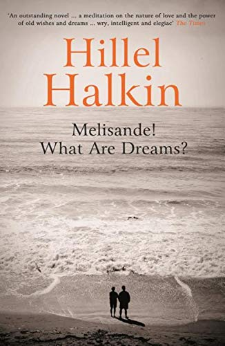 9781847085009: Melisande! What Are Dreams?