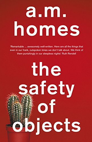 9781847087300: The Safety of Objects