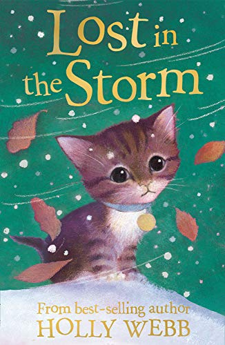 Lost in the Storm: HOLLY WEBB
