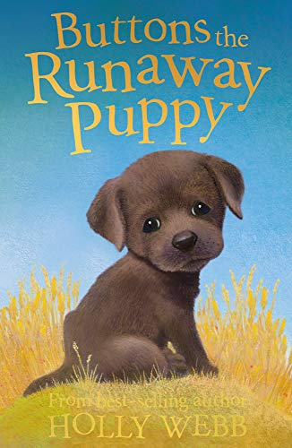 9781847150875: Buttons the Runaway Puppy (Holly Webb Animal Stories)