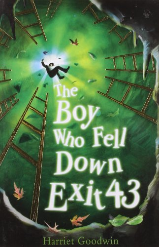 9781847150905: The Boy Who Fell Down Exit 43